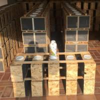 Kunstschwarm ca. 1,5 kg Bienen in der Reihenfolge der Bestellungen Ligustica